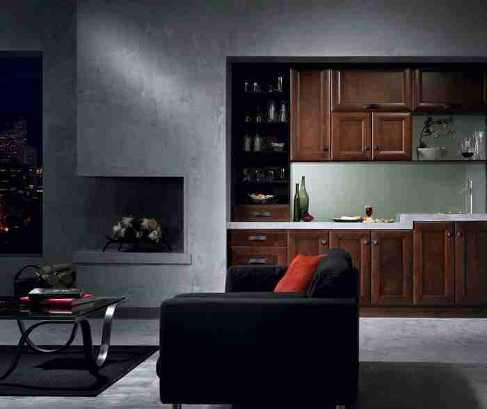 UltraCraft Cabinetry Maple Cabinet in Contemporary Bar Area
